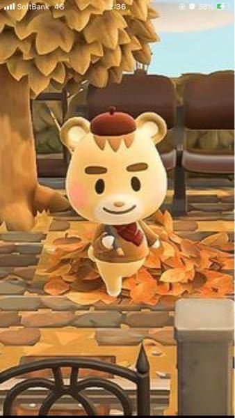 あつ森のキャラクターのこの子の名前わかる方いますか?
