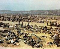 消えた百万人 -ドイツ人捕虜収容所、死のキャンプへの道- アイゼンハワーがドイツの捕虜を人道的に扱わなかったのは本当でしょうか?  http://ona.blog.so-net.ne.jp/2009-12-29 一般的にソビエトに捕らえられ...