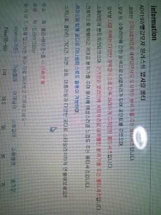 インフォメーション,ロンT,ハングル語,文字,韓国語,イラスト サイドシャーリング,部分