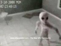 アメリカ軍宇宙人ありめす アメリカ軍はグレイと密約していますよね、グレイは「UFOの作り方を教える代わりに人間を遺伝子実験させてくれ」と言う内容でしたね  誘拐するのはアメリカ人が一番でありめすか?...