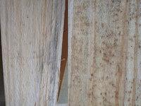杉のシミとカビ ワトコオイルのダークでごまかせますか? 杉のシミとカビをワトコオイルのダークでごまかせますでしょうか? 左がシミ、アオ? 右がカビみたいに転々とあります。 少しペーパーで研磨してみてみ...