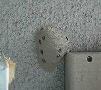 家の壁に何かの虫の巣ができていました。 蜂の巣かな?と思ったのですが、今まで見たことのない巣だったので蜂の巣かどうかも怪しいです。  そこで巣は蜂の巣なのか、と蜂の巣だったら何の蜂の巣なのか教えてください! 画像は実際に撮ったものではなく、似ている蜂の巣の画像を見つけてきたものです。