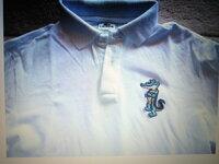 ラコステのポロシャツについて このモデルは存在しますか?パロディ? どなたか詳しい方教えてください。 タグは同じように見えますが・・・