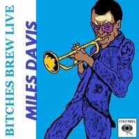 マイルス「BITCHES BREW LIVE」について。 http://www.amazon.co.jp/Bitches-Brew-Live-Miles-Davis/dp/B004ENAC4I/ref=pd_cp_d_3 このライヴCDは、どんな感じでしょうか?曲目、内容、演奏の素晴らしさは、レビューでわかるのですが、ぼくがお聞きしたいのがこのライヴCDの「空気」です。  ぼくは「フィ...