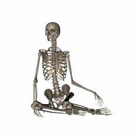 人体の骨の構造が見れるサイト 人体デッサンのポーズ集 360° http://poses.web.fc2.com/  上記以外で全身の骨格をあらゆる角度から見渡せるサイトがあれば教えて下さい。  2D,3Dかは問いません。