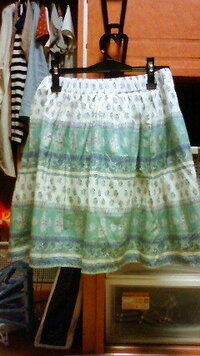 大学生女です。このスカートにあうコーディネートを教えてください。