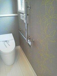 三井ホームのモデルルームのトイレで見つけた素敵なクロス!! どこのクロスか分かりますか??